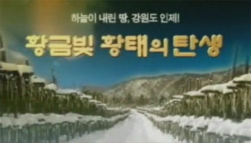 3분홍보영상 용대리황태홍보축제